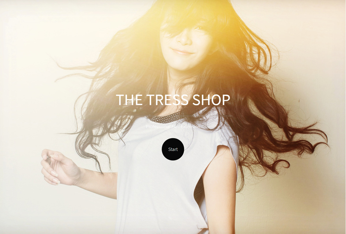 THE TRESSSHOP